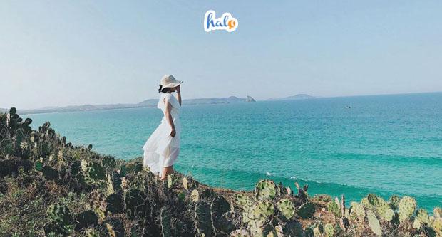 Photo of Dắt Túi Kinh Nghiệm Du lịch Tuy Hòa tự túc 'an toàn' dành cho bạn