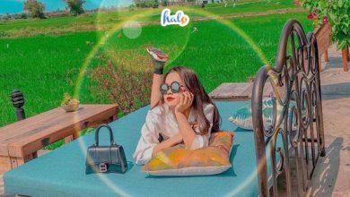 Photo of Roving ChillHouse: QUÁN CAFE GIỮA CÁNH ĐỒNG XANH 'lạ lùng' ở Hội An