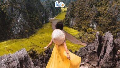 Photo of Tam Cốc Bích Động Ninh Bình: khu danh thắng đệ nhất cố đô