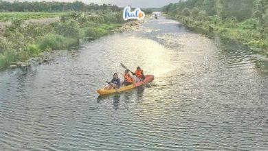 Photo of Ghé thăm khu du lịch Cánh đồng bất tận, trải nghiệm sông nước miền Tây độc đáo