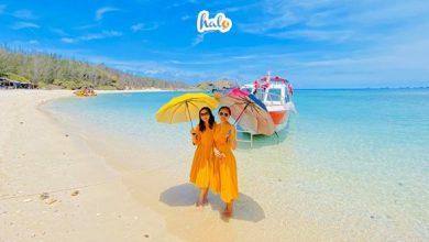 Photo of Kinh nghiệm du lịch đảo Phú Quý: đi lại, thăm quan, ăn nghỉ