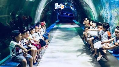 Photo of Khám phá 8 khu vui chơi trẻ em ở Hà Nội 'quậy' hoài không chán