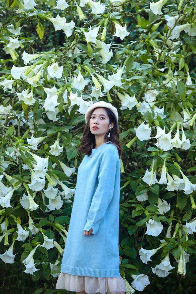 dalat_mua-hoa-chuong-da-lat
