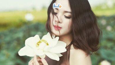 Photo of Phát hiện đầm sen trắng MIỄN PHÍ ở Hà Nội đẹp tựa phim, đi ngay kẻo hết mùa