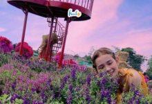 Photo of Top 6 cảnh đẹp mới nổi ở Đồng Nai được 'săn lùng ráo riết'