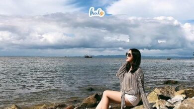 Photo of Giới thiệu khu du lịch Đồi Rồng Hải Phòng: Điểm đến cực hot hè này