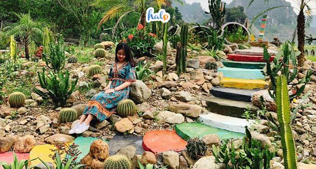 Photo of Phát hiện địa điểm sống ảo Hang Múa mới toanh, checkin ngay kẻo lỡ