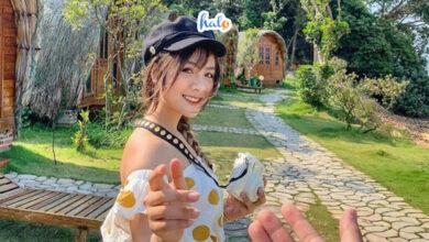 Photo of Sống ảo 'cháy máy' tại TOP 7 homestay đẹp nhất Cô Tô