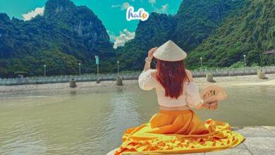 Photo of Tổng hợp kinh nghiệm du lịch, khám phá động Thiên Cung mới nhất 2020