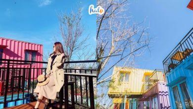 Photo of Trải nghiệm mới lạ tại những homestay container Đà Lạt độc đáo