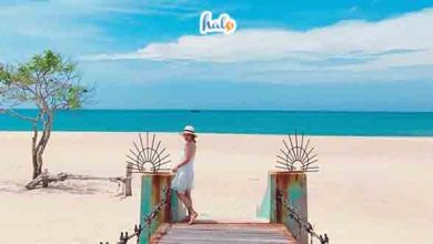 Photo of Kinh nghiệm du lịch biển suối Ồ – Điểm đến 'mới toanh' cho mùa hè này