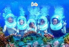 Photo of Lặn biển Phú Quốc: Bí kíp 'vàng' cần nhớ cho người mới lặn