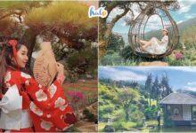 Photo of Que Garden Đà Lạt, không gian sống ảo đầy sắc hoa cho các tín đồ du lịch