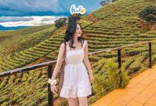 Photo of Cập nhật bảng giá 35 địa điểm du lịch Đà Lạt hot nhất 2020