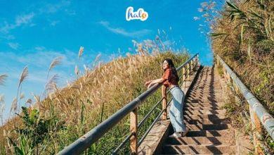 Photo of Năm nay đừng đi biển nữa, ta xách Balo đi du lịch Bình Liêu thôi