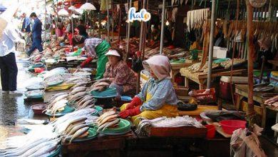 Photo of Một ngày ở Chợ Điện Biên Thanh Hóa sôi động và thú vị đến thế nào?