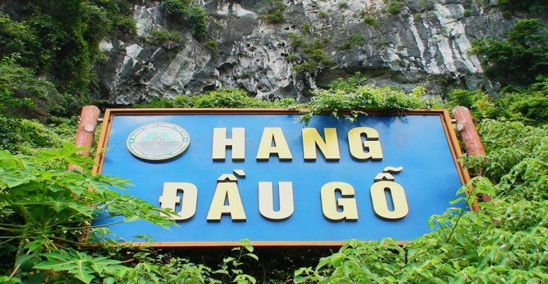 hang-dau-go