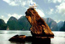 Photo of Hòn Con Cóc – Hòn đảo mang hình hài kỳ lạ trên vịnh Hạ Long