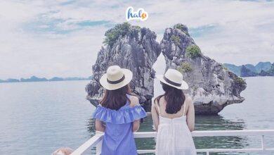 Photo of Khám phá Hòn Trống Mái Hạ Long, vẻ đẹp 'lạ' làm say lòng du khách