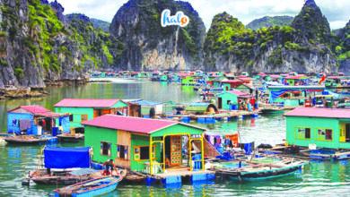 Photo of Về làng chài Vùng Viêng – Chốn yên bình trong lòng Vịnh Hạ Long