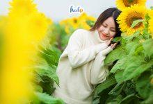 Photo of Đắm say trước vẻ đẹp tựa chốn bồng lai tại thiên đường hoa Quảng La