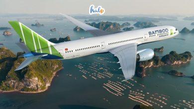Photo of HOT: Vé máy bay Vietjet, Bamboo Airways đồng loạt giảm còn 35.000 – 36.000 đồng/vé