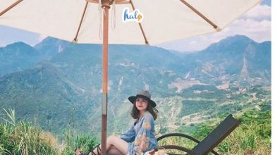 Photo of Chia Sẻ Kinh Nghiệm Khám Phá Bản Tả Van Sapa Chi Tiết Nhất