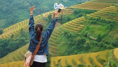 Photo of Khám phá vẻ đẹp tuyệt vời của Đèo Khau Phạ, bạn không thể bỏ qua
