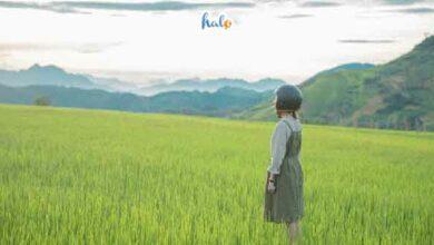 Photo of Top 9 địa điểm du lịch gần Hà Nội 2 ngày 1 đêm cho dịp cuối tuần