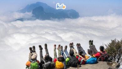Photo of Hướng dẫn kinh nghiệm chinh phục đỉnh Fansipan cực chi tiết