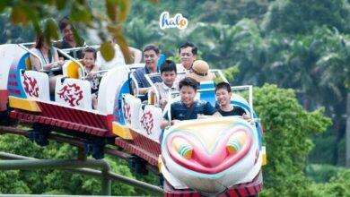 Photo of Cùng hội bạn thân 'phượt' khu du lịch Đầm Long siêu tiết kiệm