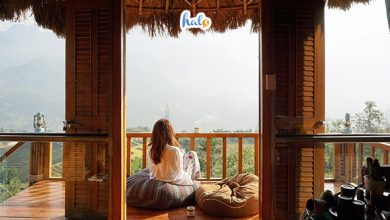 Photo of 'Lạc trôi' ở Sapa Clay House decor xinh xắn, view cực chill