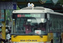 Photo of LƯU GẤP các tuyến xe buýt Hà Nội tới các điểm du lịch 'hot' cho tân sinh viên