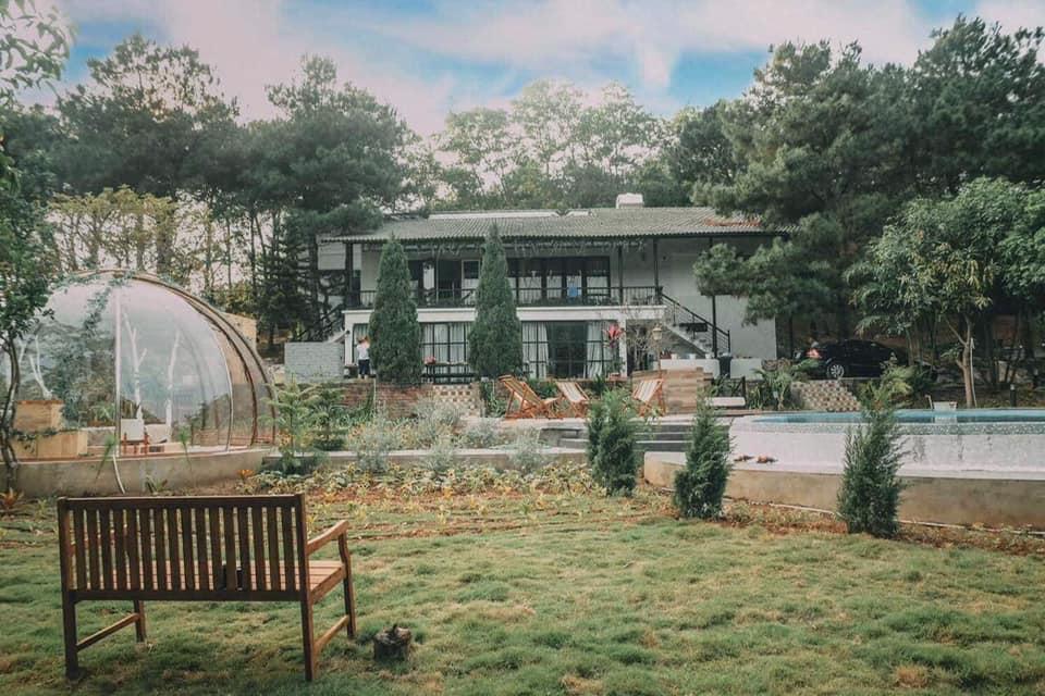 pine forest villa soc son