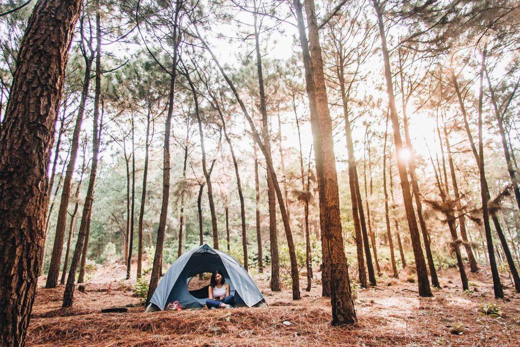 Cắm trại 2