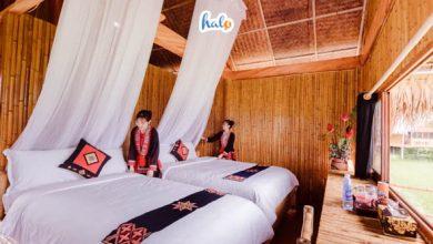 Photo of Hoang Su Phi Lodge chốn nghỉ chân tuyệt nhất cho dân phượt