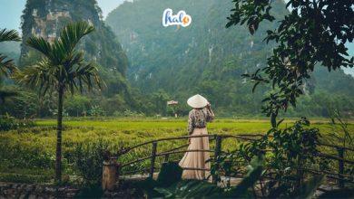 Photo of 'Chill hết nấc' ở Tam Coc Garden Resort, nơi nghỉ dưỡng vạn người mê
