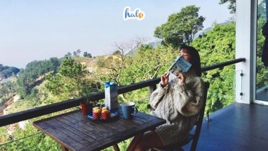 Photo of Nghỉ dưỡng ở May Villa Tam Đảo cùng hội bạn thân tụ tập cuối tuần