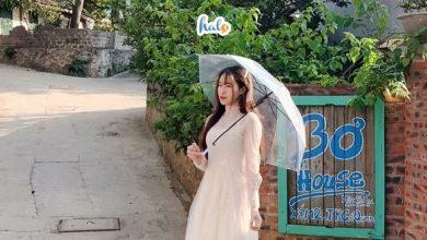 Photo of Bơ house Mộc Châu: homestay 'hạt dẻ' cho team xê dịch