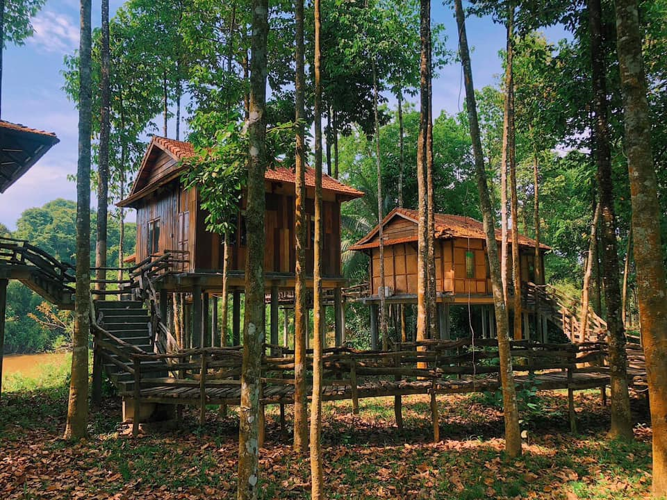 green bamboo lodge 2