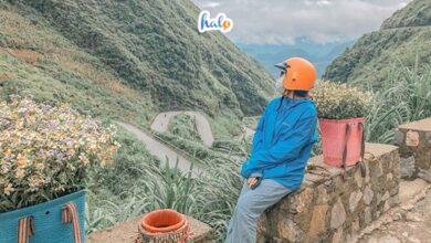 Photo of Kinh nghiệm du lịch Hà Giang đầy đủ, chi tiết từ A – Z