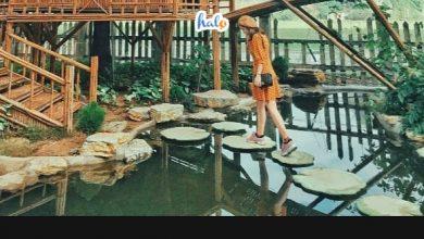 Photo of Phá đảo Hang Múa Ecolodge cùng hội bạn thân tại Ninh Bình