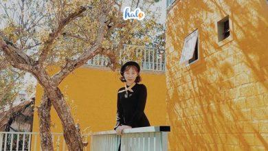 Photo of Lạc vào 'truyện cổ tích' tại Fairy house Mộc Châu thơ mộng