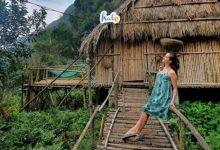 Photo of Ghé Chezbeo Homestay checkin bungalow nhỏ xinh nổi bật giữa hồ sen