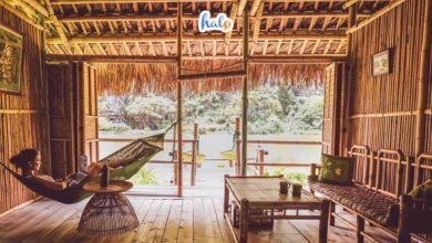 Photo of Review chi tiết, đầy đủ nhất về Nguyen Shack Ninh Bình Homestay
