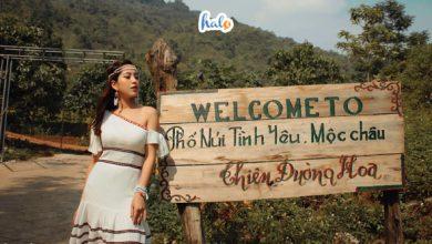 Photo of Ai về Mộc Châu nhớ dừng chân ở Phố Núi Tình Yêu