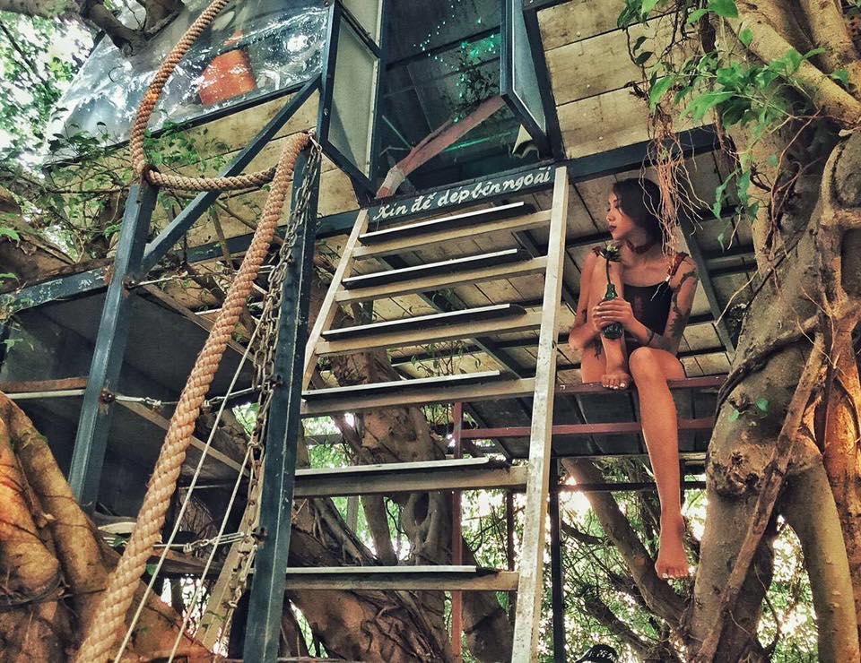 tree house ma mi