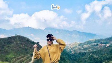 Photo of Chinh phục đỉnh Pha Luông: 'nóc nhà' Mộc Châu với view cực ảo