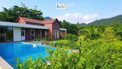 Photo of Top 10 Villa Gần Hà Nội view đẹp lung linh cho nhóm đông