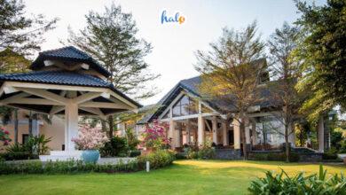 Photo of Lạc lối tại khu nghỉ dưỡng Eden Resort Phú Quốc 'đẹp không góc chết'